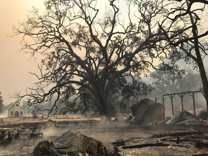 Paramount Ranch State Park fire damage